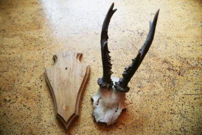 Antler DIY Walldecor