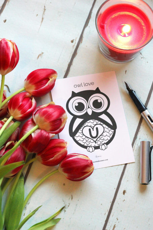 Valetins day card freebie owl love you
