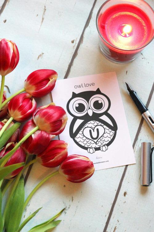 Valetins day card freebie owl love you